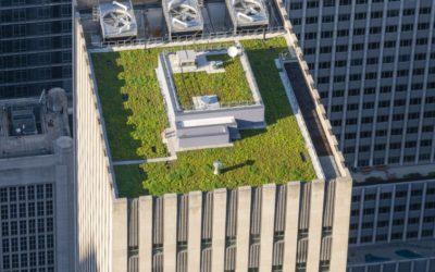 Green Roof: il giardino sul tetto ci fa risparmiare energia!